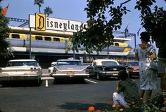 The Disneyland Hotel in Anahem, California opened its doors in 1955 as a motor-inn type Hotel. Walt Disney wanted to build a hotel for Disneyland visitors to stay overnight. However, Disney's financial resources were significantly depleted by the construction of...