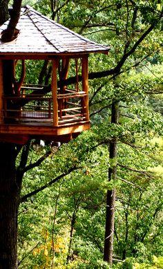 Beautiful, lofty treehouse