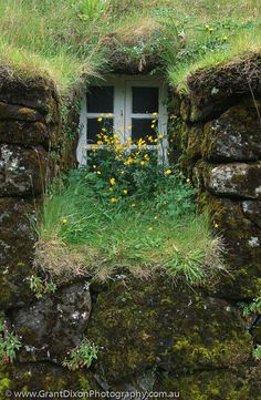 Iceland (or a hobbit house? Fairytale House, Through The Window, Green Life, Windows And Doors, Architecture, Belle Photo, Iceland, Beautiful Places, Scenery