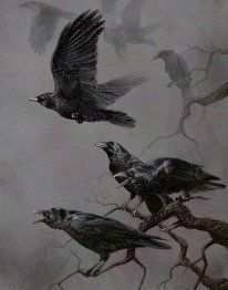 """Eerie and Glorious Illustration! """"Murder"""" by rownd Crow Art, Raven Art, Bird Art, Beautiful Creatures, Gravure Photo, Quoth The Raven, Jackdaw, Crows Ravens, Foto Art"""