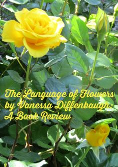 The Language of Flowers byVanessa Diffenbaugh: A Book Review Foster Care System, Family Budget, Language Of Flowers, Economic Times, Do It Yourself Projects, Garden Crafts, Book Worms, The Fosters, Love Her