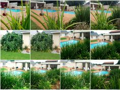 La Marchant Guesthouse is located in the heart of Roodepoort, in the tranquil suburb of Florida Park just off the N1 highway, drive up with William Nichol and cross over Ontdekkers road, second right, then second left again into Mail street. Make your booking today - call 082 600 8596. Email us info@lamarchant.co.za for more information. Visit our Website www.lamarchant.co.za Looking forward to welcome you here. Everyone leaves here as friends. Our home is your home. Everyone Leaves, Home And Away, Florida, Make It Yourself, Website, Park, Street, Friends, Plants
