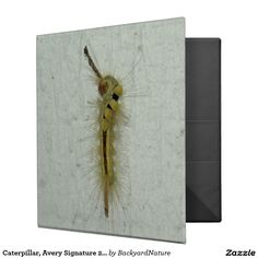 "Caterpillar, Avery Signature 2"" Binder. Binder"