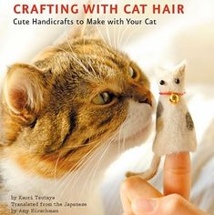 56 Best Crazy Cat Lady Gifts Images In 2018 Pets Cat