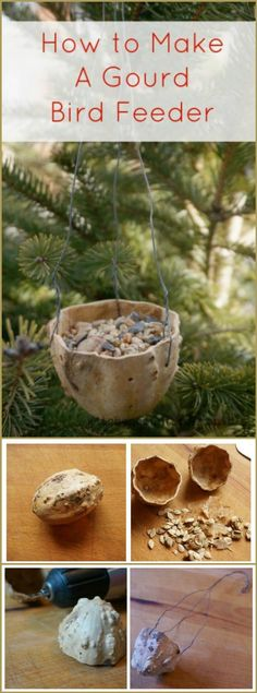 89 Unique DIY Bird Feeders - Full Step by Step Tutorials - DIY & Crafts