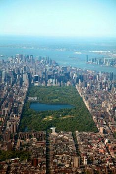 Central Park. NYC