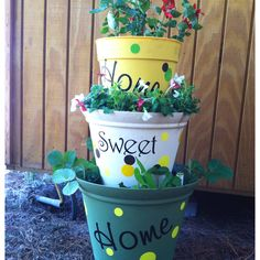 Mother day gift for my mother-inlaw.       We put a tomato plant I the top and strawberry plants in the bottom with flowering plants in the middle pot !