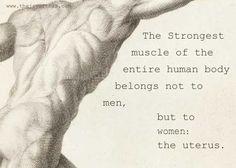 The Uterus.