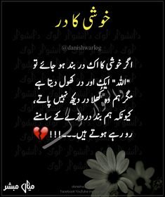 2678 Best Golden Words In Urdu Images In 2019 Urdu Quotes Manager