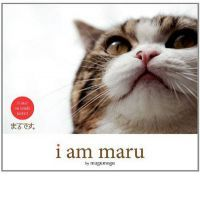 Maru, an adorable Japanese feline, has taken the Internet and the world by storm. In Japanese 'Maru' means circle or round, a fitting name for this gorgeous male Scottish Fold cat who loves to charge and dive headfirst into cardboard boxes, drawers, and trashcans.