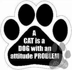 A Cat Is A Dog With An Attitude Problem Paw Magnet http://doggystylegifts.com/collections/dog-paw-magnets/products/a-cat-is-a-dog-with-an-attitude-problem-paw-magnet