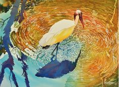 Lawrence Danecke | WATERCOLOR | American Wood Stork