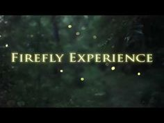 Tennessee fireflies: A summertime light show - YouTube