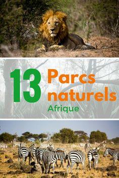 Découvrez 13 parcs naturels en Afrique, Maroc, Cap vert, Ouganda, Rwanda, Kenya, Zimbabwe, Afrique du Sud, Ile Maurice, Madagascar, Lesotho et Mozambique. Pour vous donner de nombreuses idées de voyage à travers le monde africain.