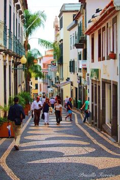 Funchal, Portugal//Funchal est une ville portugaise, chef-lieu de l'île de Madère et de la région autonome de Madère regroupant les îles de l'archipel. Wikipédia