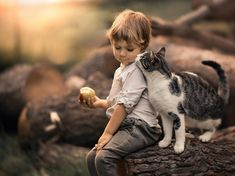 Ideas For Cute Children Photography Kittens Animals For Kids, Animals And Pets, Baby Animals, Cute Animals, Kids And Pets, Cute Kids Photography, Animal Photography, I Love Cats, Cute Cats