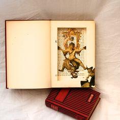hidden in a book...