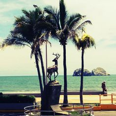 Beautiful Mazatlan http://www.travelandtransitions.com/destinations/destination-advice/latin-america-the-caribbean/mexico-travel-the-best-mexico-beaches-in-western-mexico/