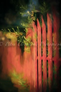 Fence... painterly photography Photography For Sale, Fine Art Photography, Fence, Colours, Autumn, Prints, Painting, Art Photography, Fall