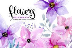 Watercolor purple & pink flowers by WatercolorS on @creativemarket