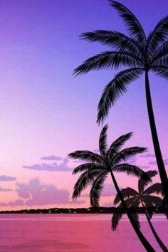 Beachy wallpaper iphone summer backgrounds palm trees Ideas for 2020 Sunset Iphone Wallpaper, Beach Sunset Wallpaper, Summer Wallpaper, Nature Wallpaper, Wallpaper Backgrounds, Wallpaper Quotes, Iphone Wallpapers, Hipster Wallpaper, Ocean Wallpaper