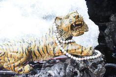 The details : Hong Kong, China ,  #asia #china #dp2q #dp3m #fan #fish #hongkong #lions #merrill #qauttro #ropes #sigma #stripes #thedetails