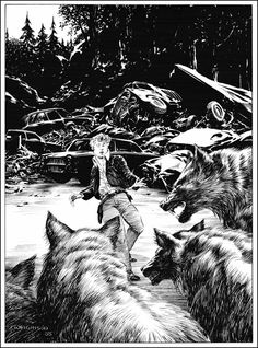 Image result for bernie wrightson the stand