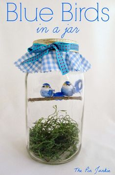 These blue birds in a jar make me smile!