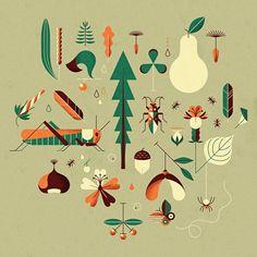 nature / Andrea Manzati