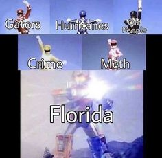 The sad thing is that all the Florida memes are accurate.(born and raised Floridian) Florida Man Meme, Florida Funny, Florida Humor, Stupid Funny Memes, Funny Relatable Memes, Haha Funny, Quality Memes, My Guy, Dankest Memes