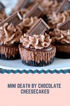 Mini Death By Chocolate Cheesecakes – Recipes-Yummy Death By Chocolate Cheesecake Recipe, Chocolate Chip Cookies, Chocolate Recipes, Mini Chocolate Desserts, Chocolate Cupcakes, Mini Desserts, Just Desserts, Delicious Desserts, Light Desserts