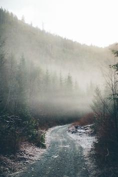 This photograph reminded me of the 5 mile dirt road that we take to get to our cabin. When I was very young it was so rocky that our tailpipe would get torn off every time we drove in. A small price to pay for a fun summer!