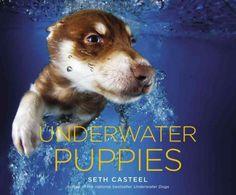 Underwater Puppies, by Seth Casteel