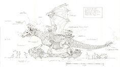Dessin du Dragon des mers de Calais