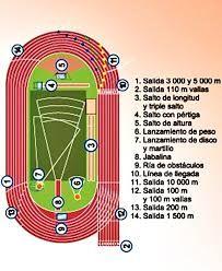 Resultado De Imagen Para Dibujo De La Pista De Atletismo Con Sus Medidas Y Carriles Pistas De Atletismo Pista De Atletismo Atletismo Dibujo