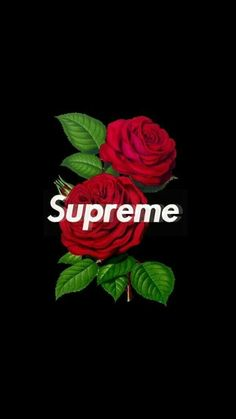 supreme rose wallpaper iphone image by Wallpaper ✷ Factøry . Discover all images by Wallpaper ✷ Factøry . Find more awesome supreme images on PicsArt. Supreme Iphone Wallpaper, Hype Wallpaper, Boys Wallpaper, Iphone Background Wallpaper, Black Wallpaper, Aesthetic Iphone Wallpaper, Mobile Wallpaper, Aesthetic Wallpapers, Gucci Wallpaper Iphone