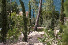Enorme giardino residenziale eseguito a Cannes.