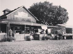 Retro photo of the Seaside Farm Market in Corolla, North Carolina.