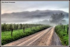 Subtle #Fog rolling in the depths of #CadesCove