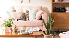 Blush pink sofa, pink living room with cactus - Maisons du Monde Blush Sofa, Pink Sofa, Tea Station, Cactus Decor, Elle Decor, Decoration, Sweet Home, Bedroom Decor, Colours