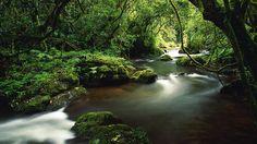 Cool Creek, too.