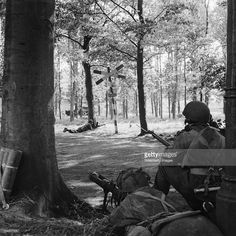 The British Airborne Division At Arnhem And Oosterbeek In Holland, A Piat gun of 'C' Troop, 1st Airlanding Reconnaissance Squadron, in position behind a tree covering a road near Wolfheze, 18 September 1944.