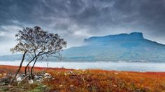 In Focus: Breathtaking Landscape Photography by Evgeni Dinev