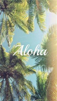 Best Summer iPhone HD Wallpapers