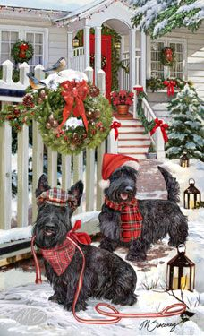 Scottish Terrier - Christmas .