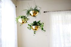 Hanging Vintage Brass Planters via @Elyse Exposito Woodbury Pehrson Larson of A Beautiful Mess