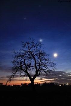 Jupiter-Venus-Moon  Feb. 24, 2012  Hungary, Somogy