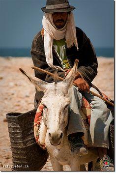 Agadir - man and his donkey  #People of #Morocco - Maroc Désert Expérience tours http://www.marocdesertexperience.com