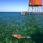 Lighthouse Snorkel Trips In The Florida Keys #snorkeling #floridakeys