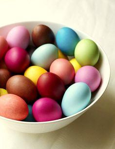 recomiendo huevos pintados vacios para decorar alguna planta de ramas finas. haces dos agujeritos en el huevo y los pasar por una rama, como bola navideña
